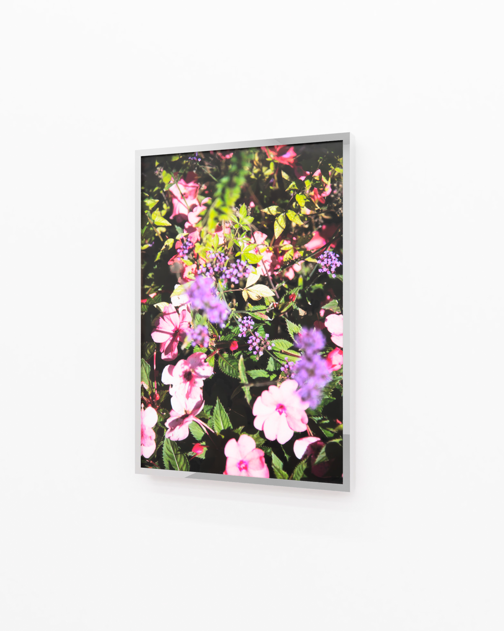 Visualisierung, Flowers